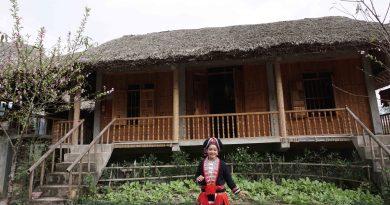 Phát hiện homestay ở Hoàng Su Phì cực chất khiến du khách phát sốt vì đẹp