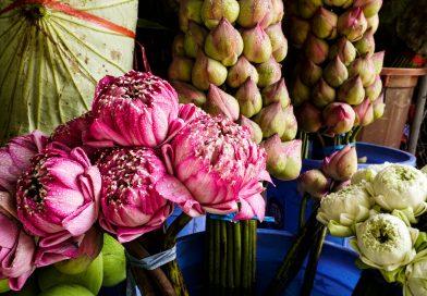 Ăn mệt nghỉ ở chợ Campuchia Hồ Thị Kỷ Quận 10 TPHCM