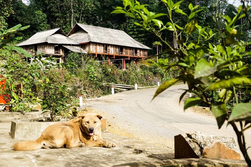 homestay-tai-pu-luong (5)