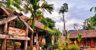 Highway 20 Homestay Phong Nha Kẻ Bàng – Homestay độc lạ cạnh dòng sông Son