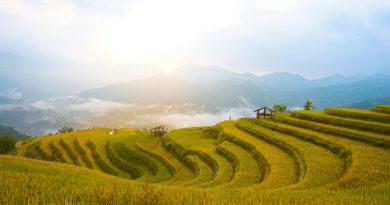 TOP 11 địa điểm săn ảnh đẹp nhất ở Hoàng Su Phì