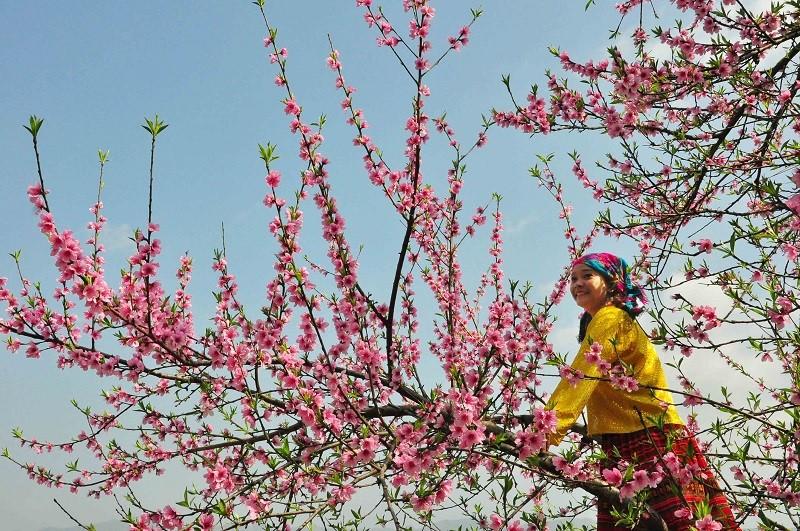 spring in thien huong village
