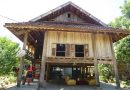 Whole Quy Thoa Homestay