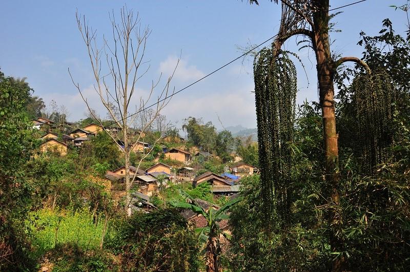 whole thien huong village