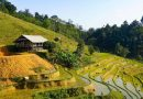 Terraced fields, ethnic culture make northern Vietnam village irresistible