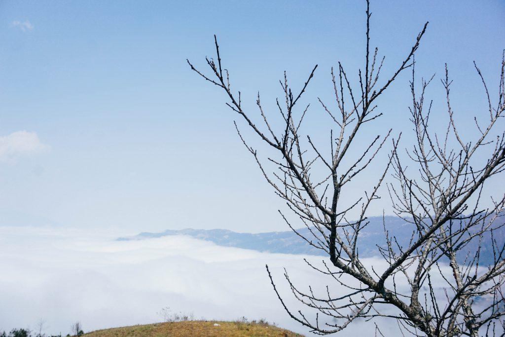 Biển mây trước nhà A Hờ