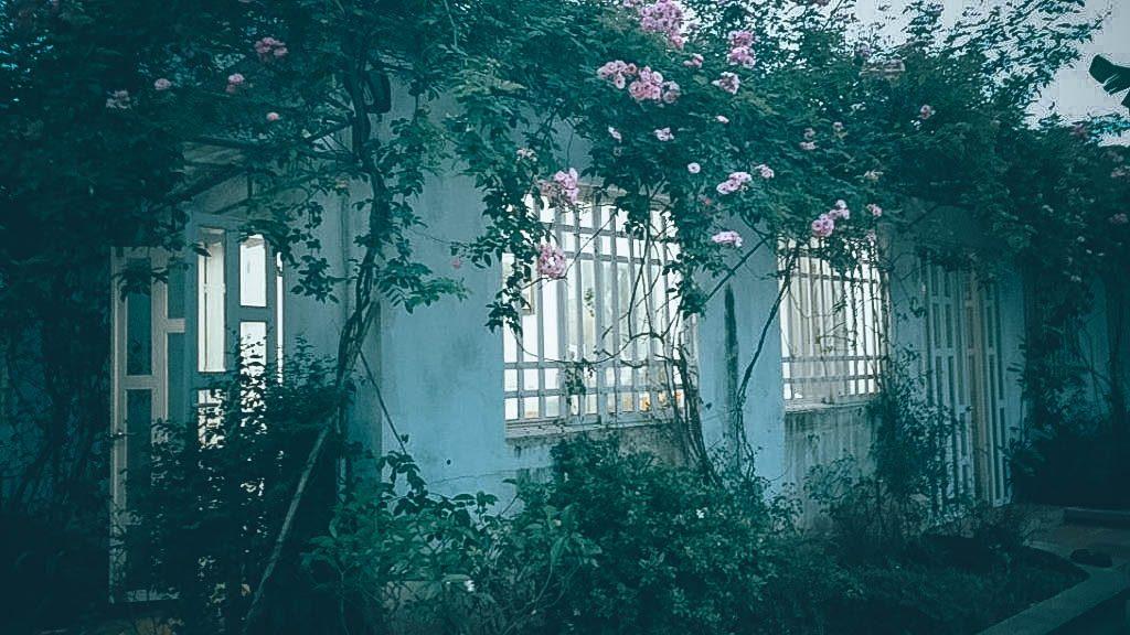 Ngôi nhà màu trắng tuyết- Nam Dinh Farm and Homestay